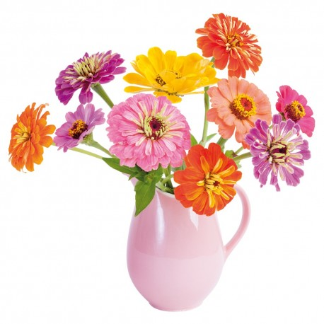 flat-flowers-zinnia