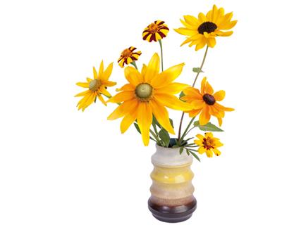 flat-flowers-sunflower